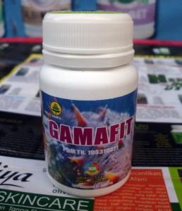Gamafit (Kapsul Gamat)