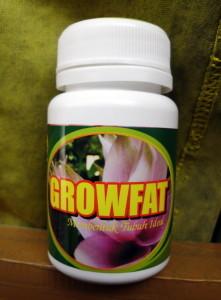 Grow Fat (Penggemuk Badan)