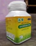 ANDROBIOTIK | Antibiotik Alami