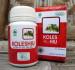 KOLESHIU (Herbal Pembakar Kolesterol Tinggi)