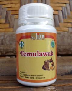 Temulawak 45 kapsul-Liza herbal - toko almishbah2