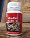 Sarang Semut – Herbal Indo Utama