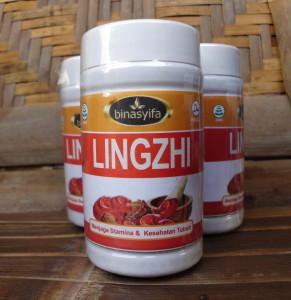 lingzhi binasyifa - toko almishbah1