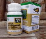 Herba Tempuyung Herba Indo Utama