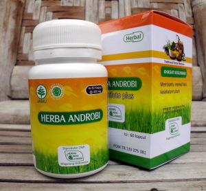 herba androbi kotak HIU - toko almishbah2