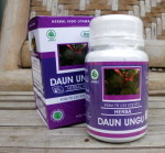 DAUN UNGU – Herbal Indo Utama