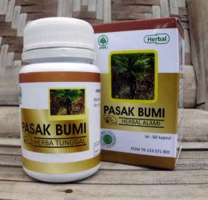 PASAK BUMI Herba Indo Utama