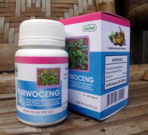 Purwoceng – Herbal Indo Utama